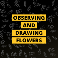 Masterclass: Observing and Drawing Flowers